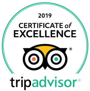 TripAdvisor Logo certificate of excellence 2016 to 2019